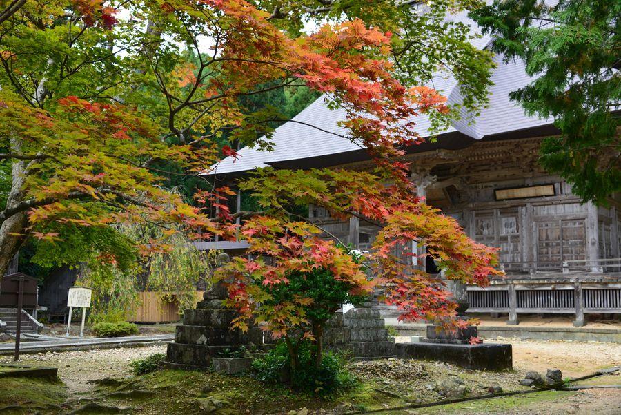 国上寺の紅葉-1