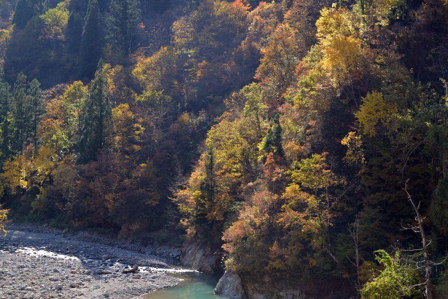 大谷川の紅葉-5