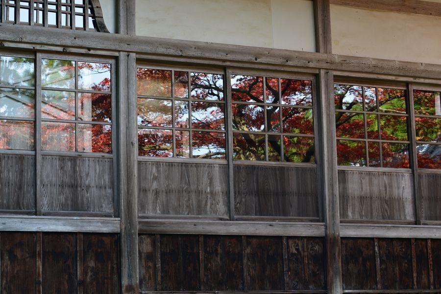窓に映して-3