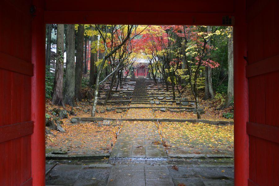 如法寺 雨の紅葉-1