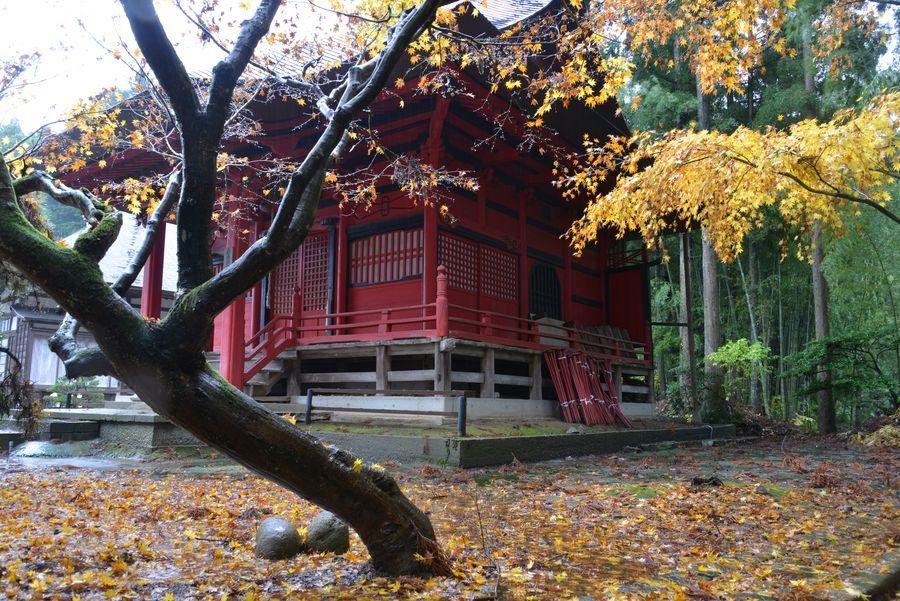 如法寺 雨の紅葉-3