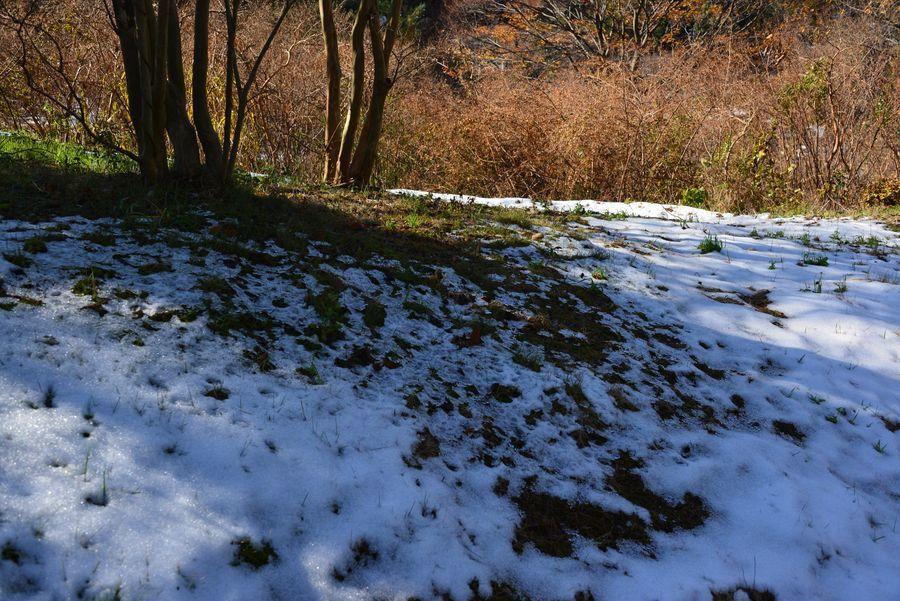 初雪の跡-2