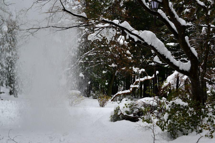 どか雪 公園-1