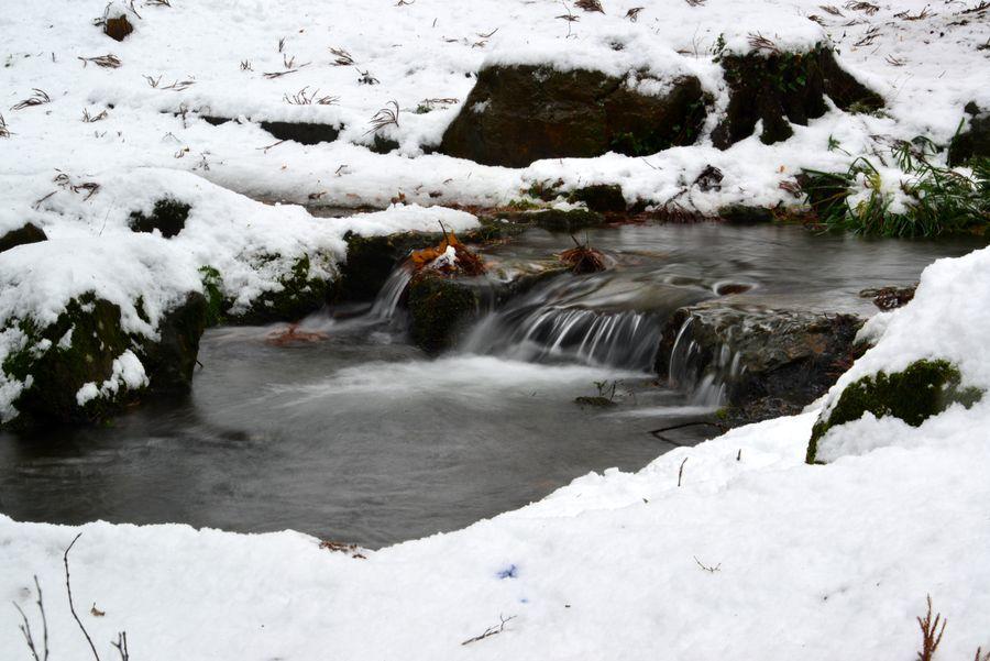 どか雪 公園-3