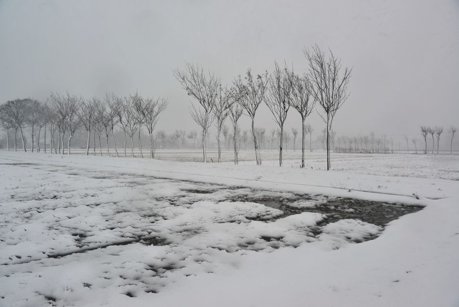 吹雪の中で-2