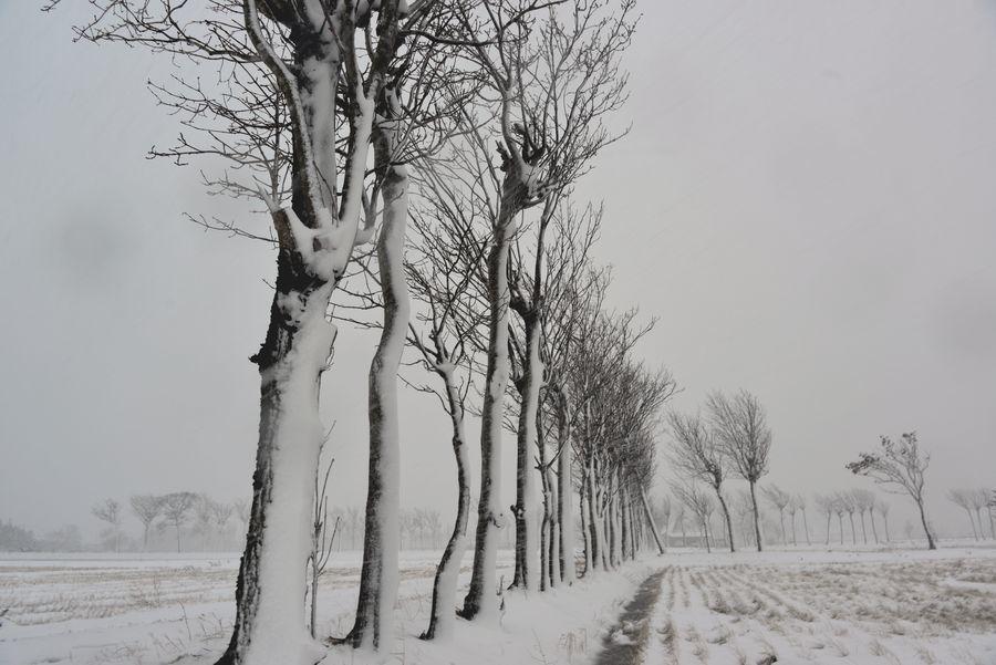 吹雪の中で-3