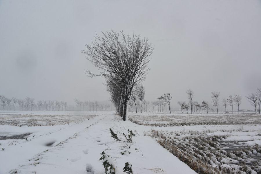 吹雪の中で-4