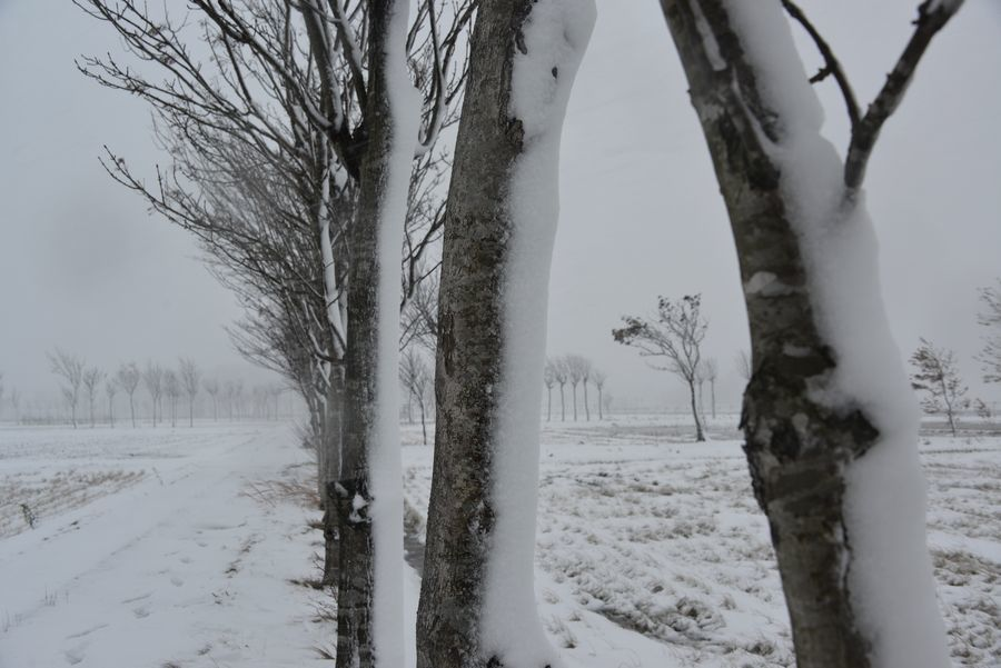 吹雪の中で-5