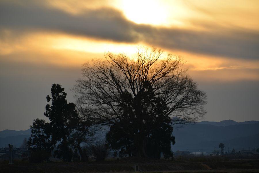 年の暮れの夕陽-3