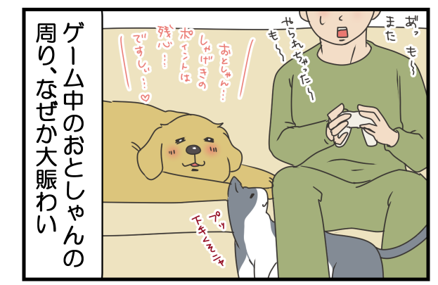 20171118.png