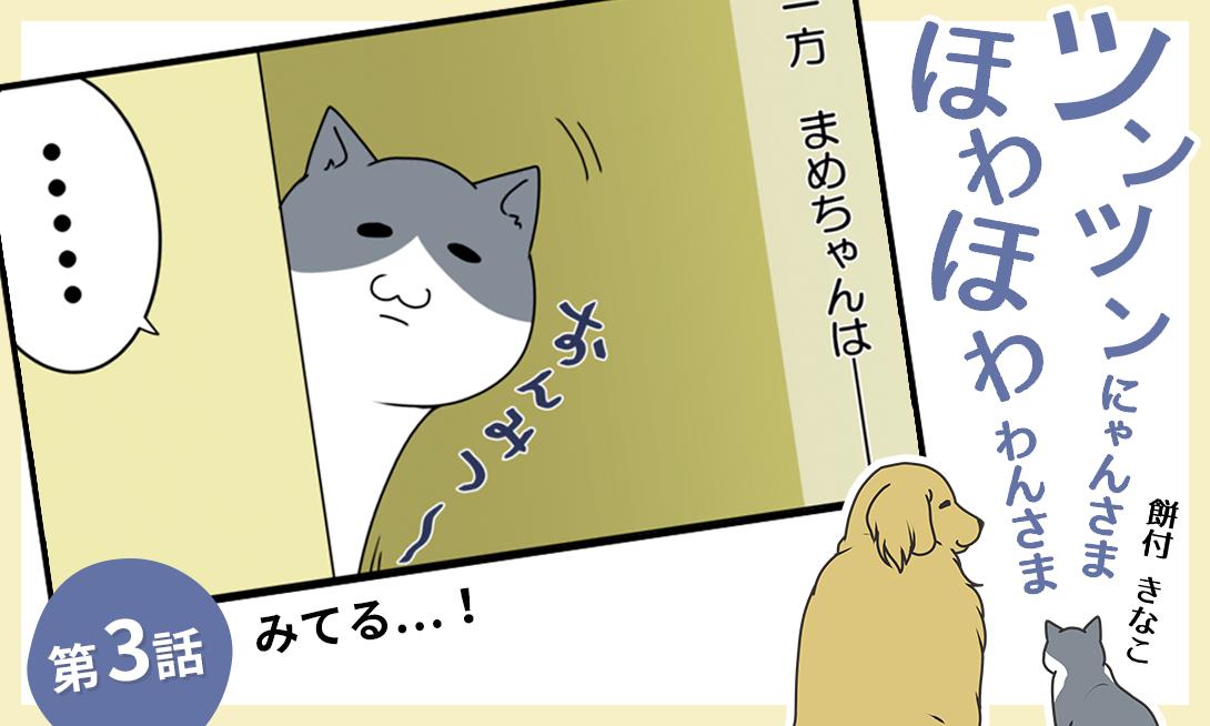 MV_ツンツンにゃんさま_03i