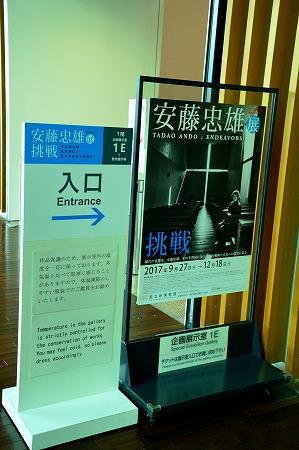 DSC_安藤8054_01