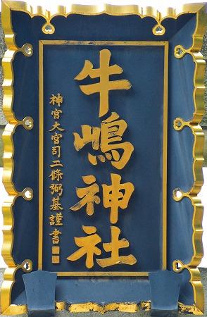 DSC_牛島8126_01