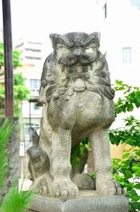 DSC_今戸8207_01