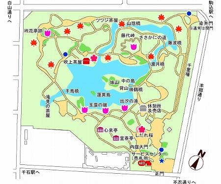 map03101-thumb-575xauto-6020.jpg