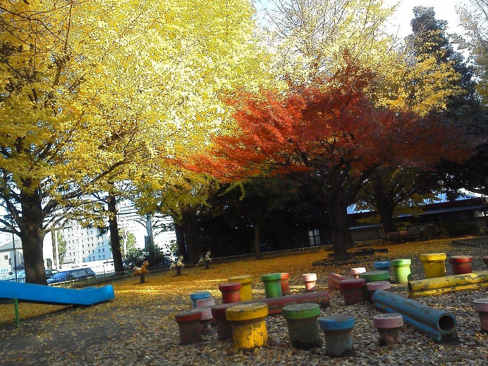 F1000268広沢原児童公園11月28日