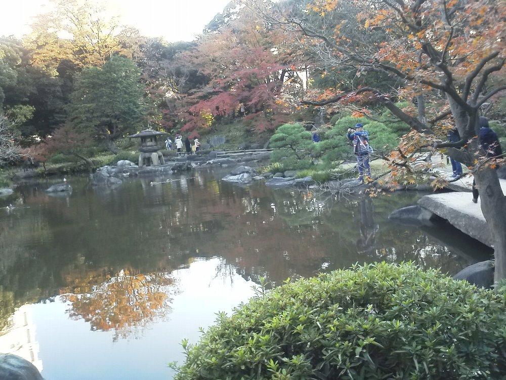 F1000225旧古河庭園11月17日