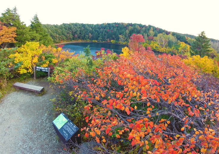 桶沼の紅葉