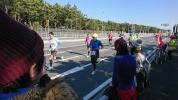 H29 湘南国際マラソン1