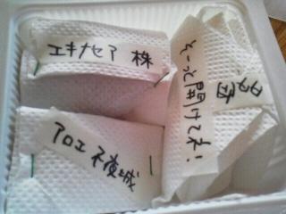 171214美果さんから苗2