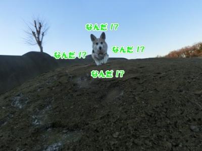 171215②