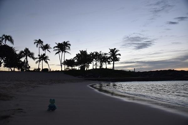 ハワイ 2017 (2264)