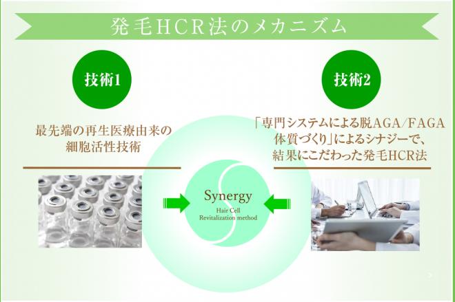 hcr_mechanism-e1503115037641.png
