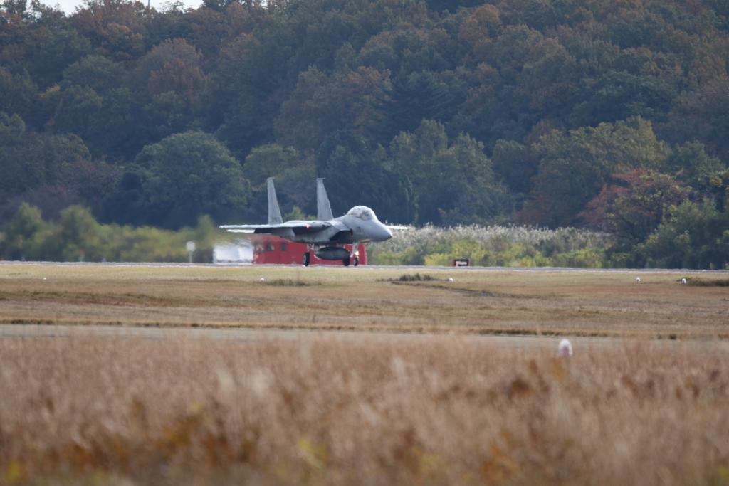 F-15J/DJの着陸_2