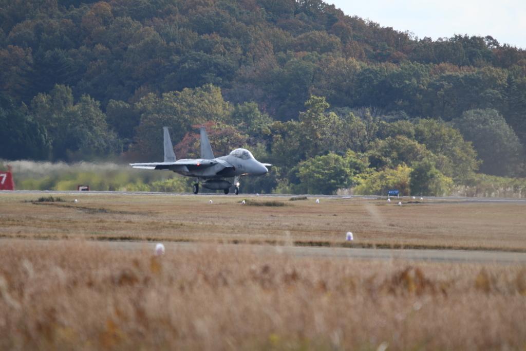 F-15J/DJの着陸_3