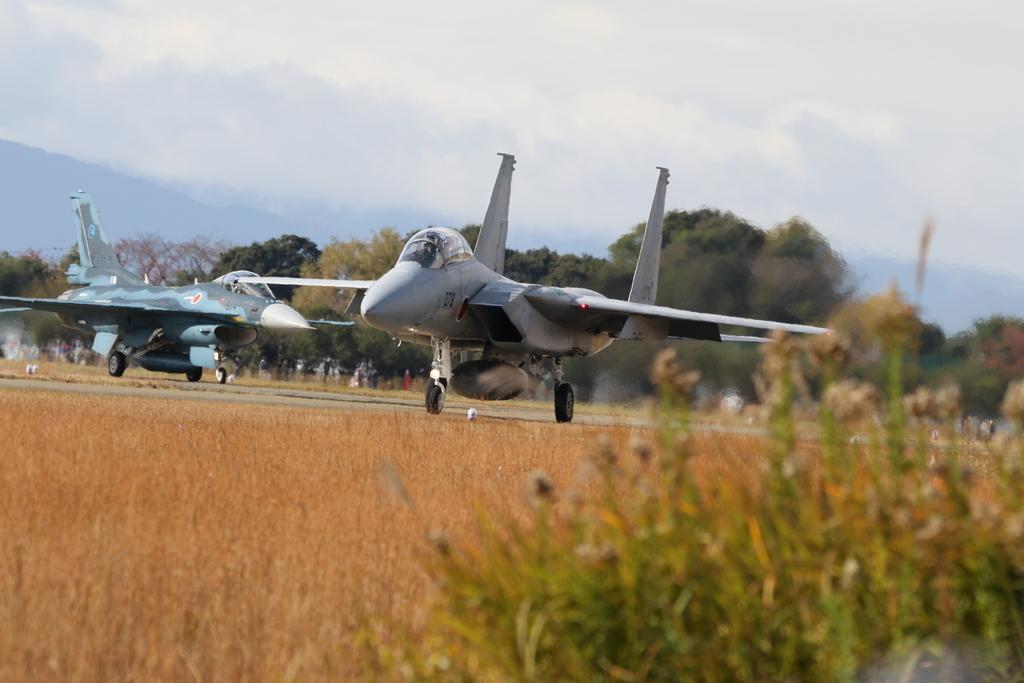 F-15J/DJとF-2A/Bとの2ショット_1