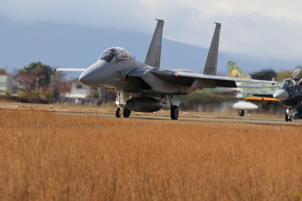 F-15J/DJの着陸_15