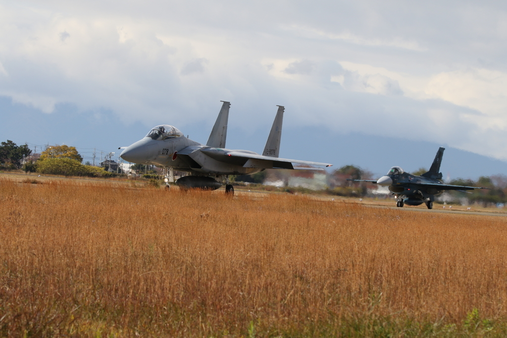 F-15J/DJとF-2A/Bとの2ショット_4
