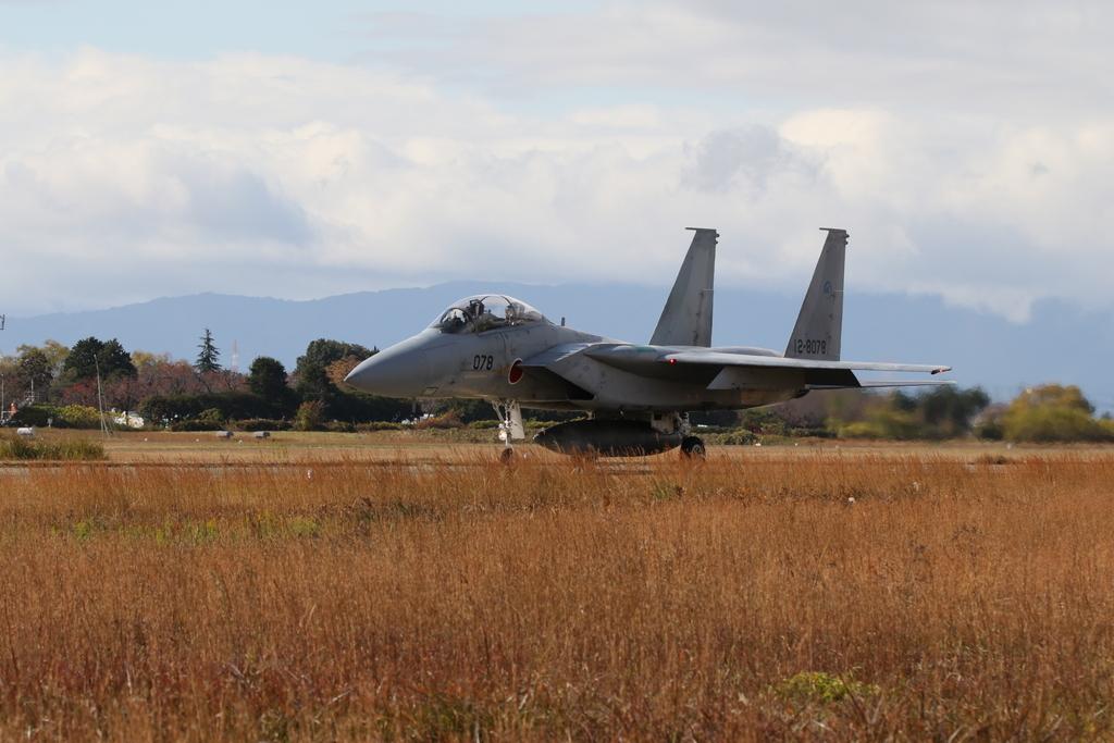 F-15J/DJの着陸_16
