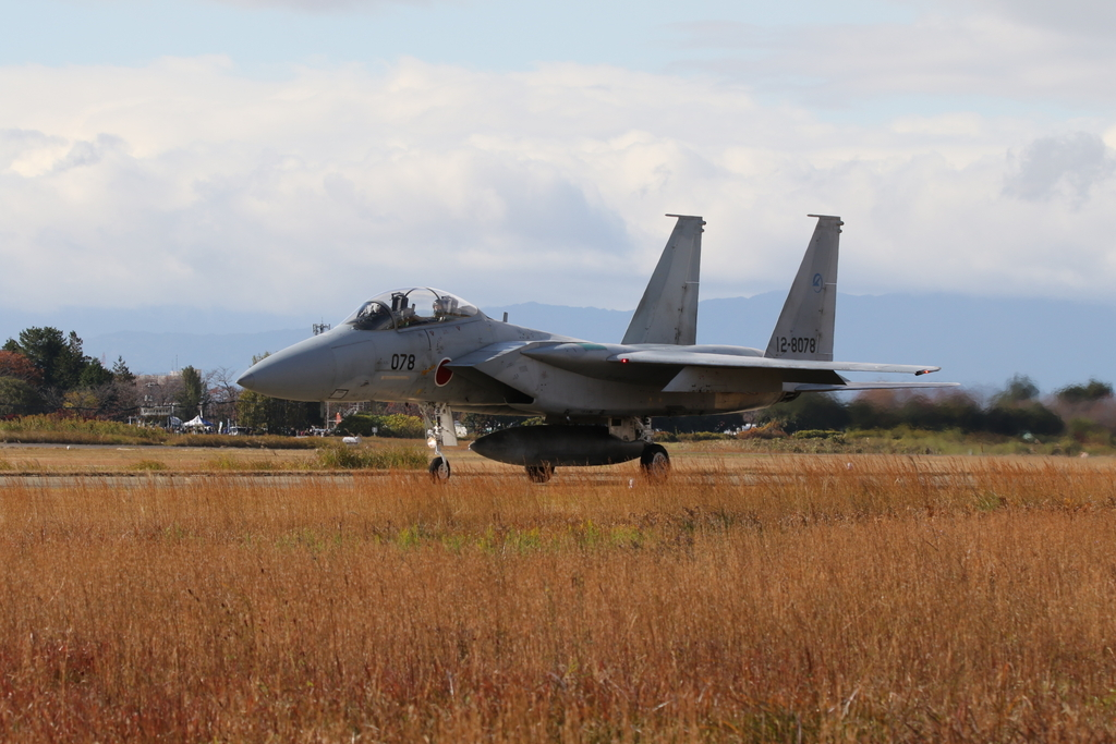 F-15J/DJの着陸_17