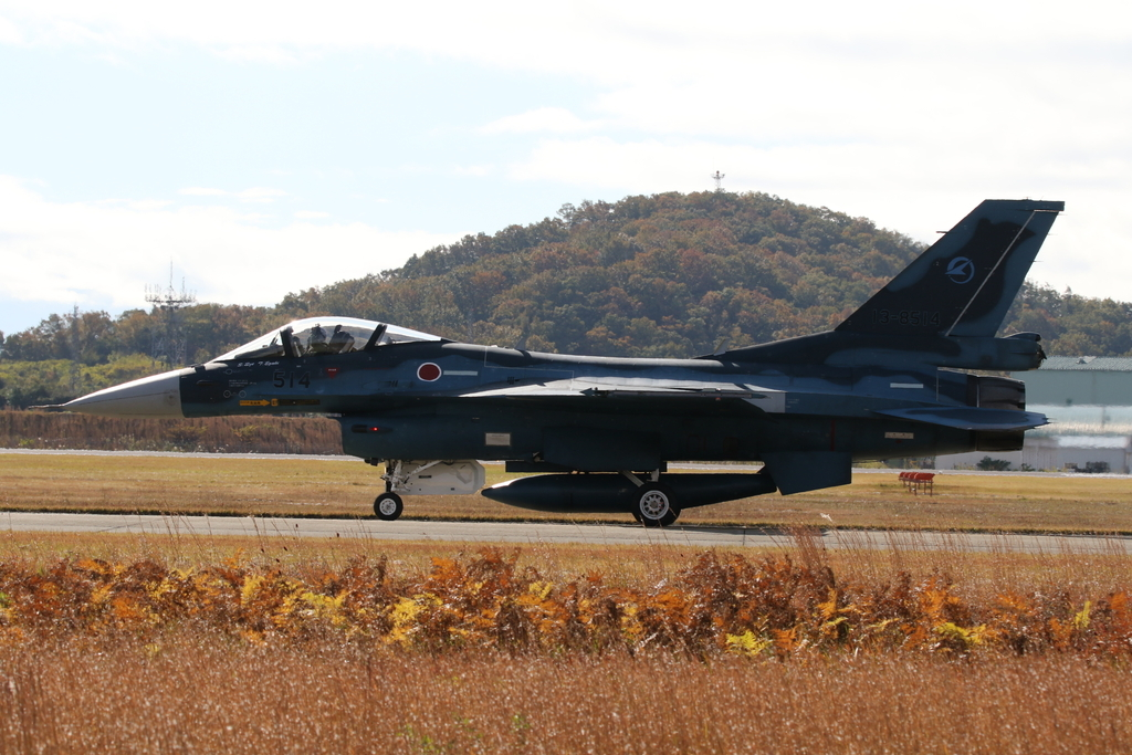 F-2A/Bの着陸_12