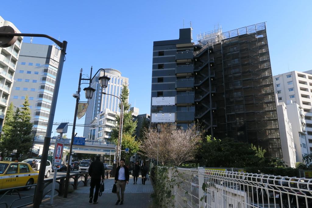渋谷橋、渋谷川、冬桜_1
