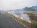 171104木津川堤防の野焼き