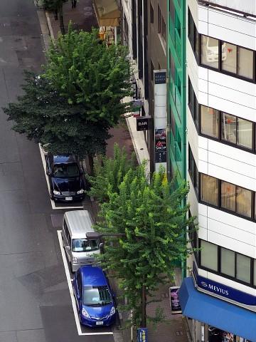 akisenochiai02.jpg
