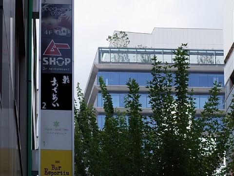 akisenochiai12.jpg
