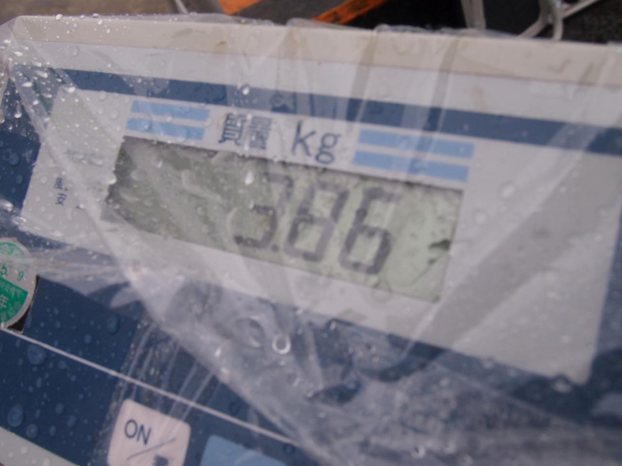 s-P1017740.jpg