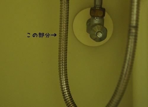 PA110002.jpg
