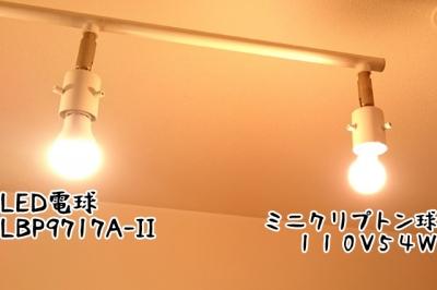 DSC_3356-5.jpg
