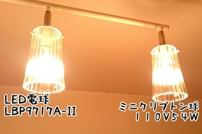 DSC_3358-6.jpg