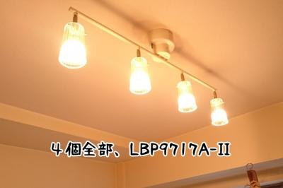 DSC_3360-10.jpg