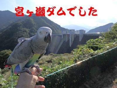 3_宮ヶ瀬ダム