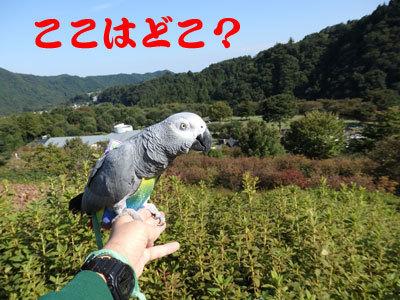 1_ここはどこ