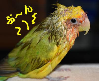 4_ぷ~ん