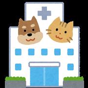 細胞(動物病院