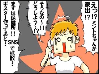 001_20171002194845371.jpg