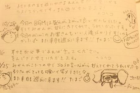 IMG_4594.jpg